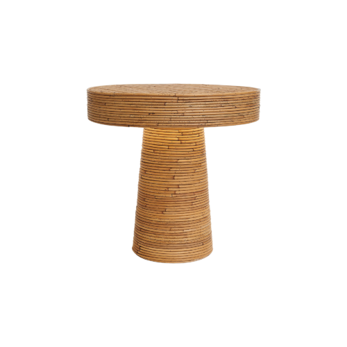 Mushroom - India Mahdavi